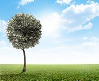Αμερικανικό δολάριο δέντρων χρημάτων Στοκ εικόνες με δικαίωμα ελεύθερης χρήσης