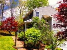 Αμερικανικό σπίτι με τον κήπο Στοκ εικόνες με δικαίωμα ελεύθερης χρήσης