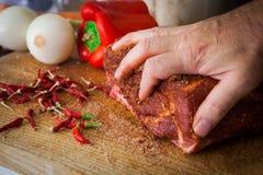 Αμερικανικό τργμένο ύφος χοιρινού κρέατος Στοκ Εικόνα