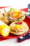 αμερικανικό υγιές picnic στοκ φωτογραφίες με δικαίωμα ελεύθερης χρήσης