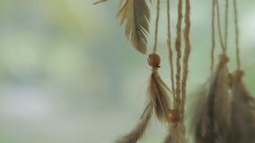 Αμερικανός ιθαγενής dreamcatcher που φυσά στο αεράκι απόθεμα βίντεο