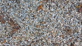 Αμμοχάλικο μπιζελιών στοκ εικόνες