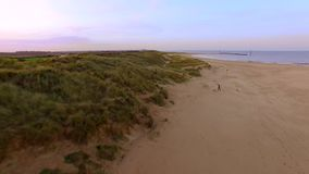 Αμμόλοφοι άμμου με τη θάλασσα στο υπόβαθρο απόθεμα βίντεο