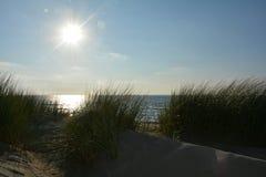 Αμμόλοφοι άμμου με τη χλόη αμμόλοφων στη Βόρεια Θάλασσα με τον ήλιο Στοκ φωτογραφία με δικαίωμα ελεύθερης χρήσης