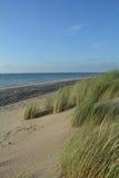 Αμμόλοφοι άμμου με τη χλόη αμμόλοφων στη Βόρεια Θάλασσα Στοκ Εικόνες
