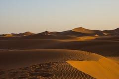 Αμμόλοφοι άμμου στην έρημο Σαχάρας, η παγκόσμια ` s μεγαλύτερη έρημος Στοκ Φωτογραφία