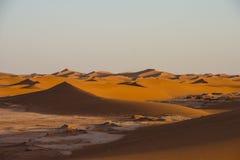 Αμμόλοφοι άμμου στην έρημο Σαχάρας, η παγκόσμια ` s μεγαλύτερη έρημος Στοκ Εικόνες