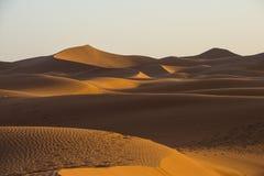 Αμμόλοφοι άμμου στην έρημο Σαχάρας, η παγκόσμια ` s μεγαλύτερη έρημος Στοκ Εικόνα