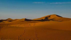 Αμμόλοφοι άμμου στην έρημο Σαχάρας, η παγκόσμια ` s μεγαλύτερη έρημος Στοκ εικόνες με δικαίωμα ελεύθερης χρήσης