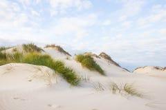 Αμμόλοφοι άμμου στην πορτογαλική ατλαντική ακτή Στοκ Φωτογραφίες