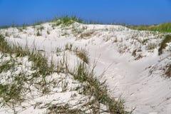 Αμμόλοφοι άμμου στην όμορφη παραλία στοκ φωτογραφία με δικαίωμα ελεύθερης χρήσης