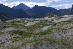 Αμμόλοφοι άμμου στο νησί Lofoten στοκ εικόνα με δικαίωμα ελεύθερης χρήσης