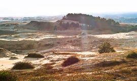Αμμόλοφοι άμμου της θάλασσας της Βαλτικής, του φωτός του ήλιου στην άμμο, των λόφων αμμόλοφων και των αμμόλοφων άμμου Στοκ Εικόνα