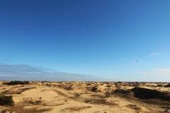 Αμμόλοφοι άμμου της μεγαλύτερης ερήμου της Ευρώπης ` s Στοκ Φωτογραφίες