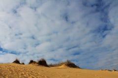 Αμμόλοφοι άμμου της μεγαλύτερης ερήμου της Ευρώπης ` s Στοκ φωτογραφία με δικαίωμα ελεύθερης χρήσης
