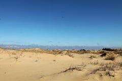 Αμμόλοφοι άμμου της μεγαλύτερης ερήμου της Ευρώπης ` s Στοκ Φωτογραφία