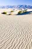 Αμμόλοφοι άμμου φρεατίων Stovepipe, εθνικό πάρκο κοιλάδων θανάτου, Californ στοκ εικόνες με δικαίωμα ελεύθερης χρήσης