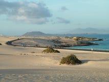 Αμμόλοφοι άμμου Στοκ φωτογραφία με δικαίωμα ελεύθερης χρήσης
