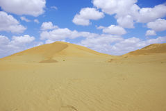 αμμόλοφοι αμμώδεις στοκ φωτογραφίες με δικαίωμα ελεύθερης χρήσης