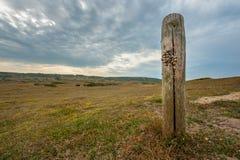 Αμμόλοφοι δ ` Hatainville κοντά στο δραματικό ουρανό barneville-Carteret το καλοκαίρι Στοκ φωτογραφία με δικαίωμα ελεύθερης χρήσης