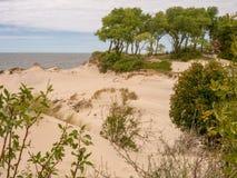Αμμόλοφοι και δάσος του βαλτικού οβελού μέσα από της θάλασσας της Βαλτικής στοκ εικόνες