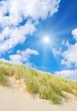 αμμόλοφοι παραλιών στοκ φωτογραφία