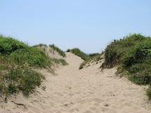 Αμμόλοφος άμμου Στοκ εικόνα με δικαίωμα ελεύθερης χρήσης