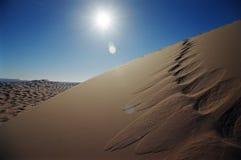 αμμόλοφος ερήμων Στοκ φωτογραφία με δικαίωμα ελεύθερης χρήσης