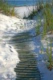αμμόλοφος θαλασσίων περίπατων στοκ φωτογραφίες με δικαίωμα ελεύθερης χρήσης