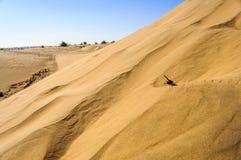 Αμμόλοφοι άμμου, αμμόλοφοι του SAM Thar της ερήμου της Ινδίας με το διάστημα αντιγράφων Στοκ Φωτογραφία