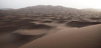 Αμμόλοφοι άμμου ερήμων Σαχάρας στο Μαρόκο Στοκ εικόνες με δικαίωμα ελεύθερης χρήσης