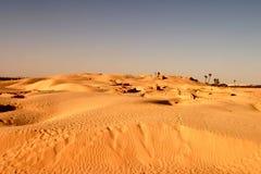 Αμμόλοφοι άμμου ερήμων Σαχάρας Στοκ φωτογραφίες με δικαίωμα ελεύθερης χρήσης