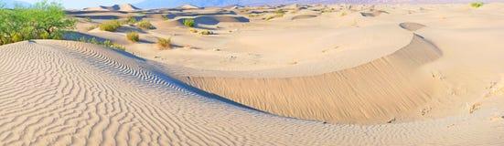 Αμμόλοφοι άμμου κοιλάδων θανάτου - πανόραμα Στοκ Φωτογραφία