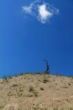 Αμμόλοφοι άμμου στο δέλτα Δούναβη Στοκ Εικόνα