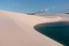 Αμμόλοφοι άμμου της Βραζιλίας Στοκ Φωτογραφία