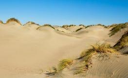 Αμμόλοφοι άμμου Στοκ φωτογραφίες με δικαίωμα ελεύθερης χρήσης