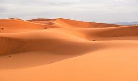 Αμμόλοφοι άμμου Erg Chebbi, Μαρόκο Στοκ Εικόνες