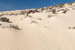 Αμμόλοφοι άμμου, Fuerteventura Στοκ φωτογραφίες με δικαίωμα ελεύθερης χρήσης