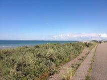 Αμμόλοφοι με τη θάλασσα Στοκ Φωτογραφία