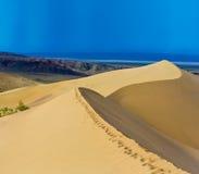 Αμμόλοφοι πανοράματος τοπίων ερήμων Στοκ Εικόνες