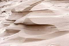 Αμμόλοφοι σε Amrum Στοκ εικόνα με δικαίωμα ελεύθερης χρήσης