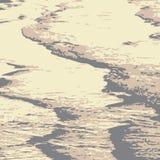 Αμμόλοφοι της ερήμου διανυσματική απεικόνιση