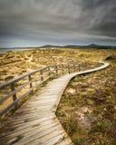Αμμόλοφοι Corrubedo Στοκ εικόνα με δικαίωμα ελεύθερης χρήσης