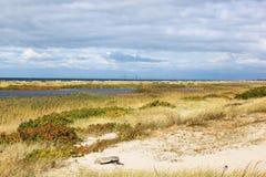 Αμμόλοφοι Falsterbo στο νότο της Σουηδίας Στοκ φωτογραφίες με δικαίωμα ελεύθερης χρήσης