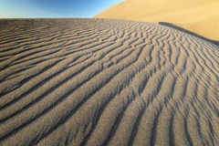 Αμμόλοφος άμμου ερήμων με τις σκιές κυματισμών στοκ εικόνα με δικαίωμα ελεύθερης χρήσης