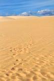 Αμμόλοφος άμμου με τα ίχνη Στοκ φωτογραφία με δικαίωμα ελεύθερης χρήσης