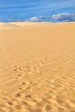 Αμμόλοφος άμμου με τα ίχνη Στοκ Φωτογραφία