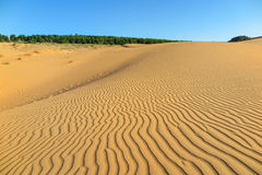 Αμμόλοφος άμμου, ΝΕ Mui, Βιετνάμ Στοκ Φωτογραφία