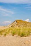 Αμμόλοφος στον οβελό Curonian Στοκ φωτογραφία με δικαίωμα ελεύθερης χρήσης