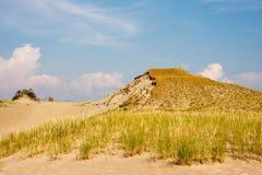 Αμμόλοφος στον οβελό Curonian Στοκ εικόνες με δικαίωμα ελεύθερης χρήσης